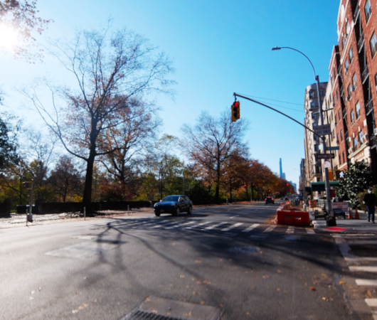 5K画質、NYから紅葉のセントラルパークお散歩動画_b0007805_06343496.jpg