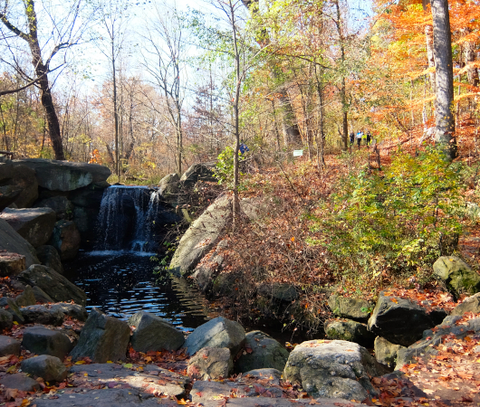 ニューヨークの癒やし空間、セントラルパーク『北の森』の滝の音_b0007805_06353098.jpg