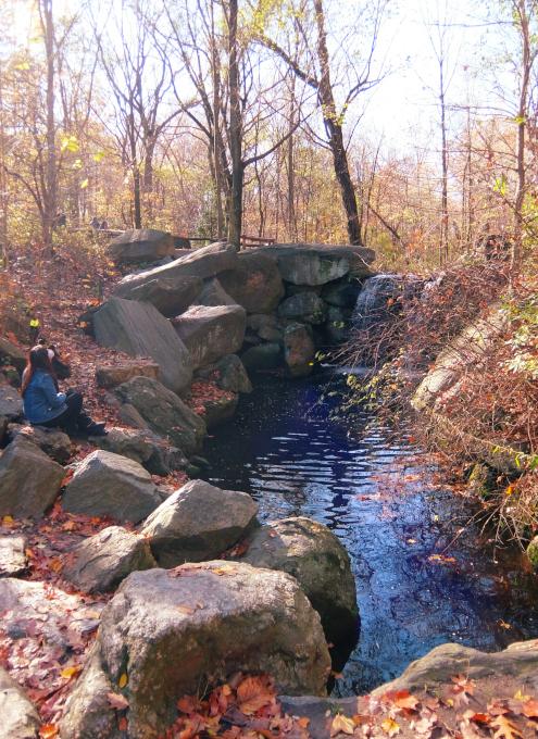 ニューヨークの癒やし空間、セントラルパーク『北の森』の滝の音_b0007805_06355409.jpg