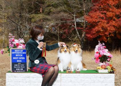 11.15 JCC 神奈川展_a0139367_17273164.jpg