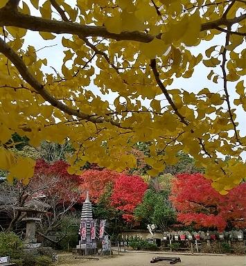 大山寺の紅葉_d0043390_22244352.jpg