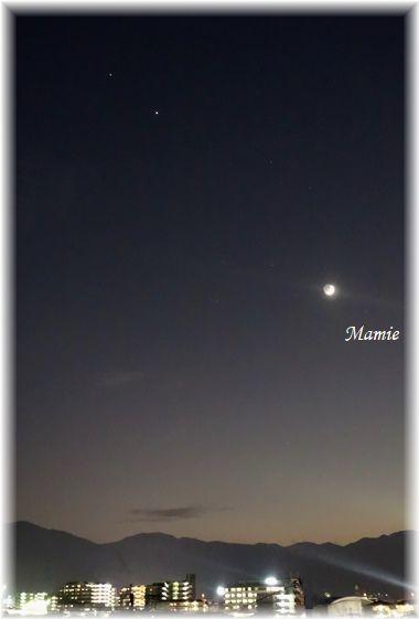 夕方の月_d0387712_20493712.jpg