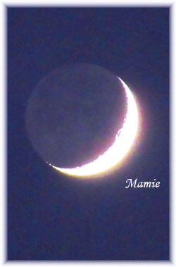 夕方の月_d0387712_20495015.jpg