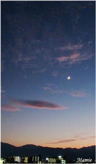夕方の月_d0387712_20495291.jpg