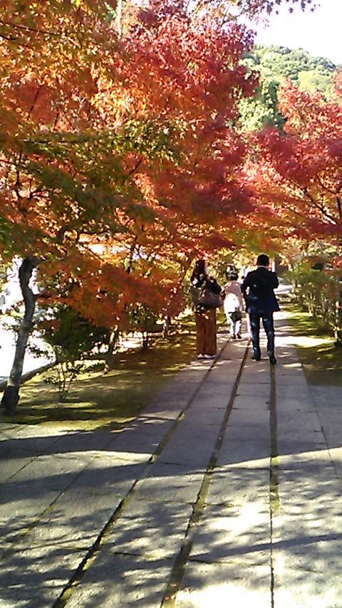 高森の家訪問 ~ 秋の錦帯橋(吉川公園)へ_b0096638_17203420.jpg