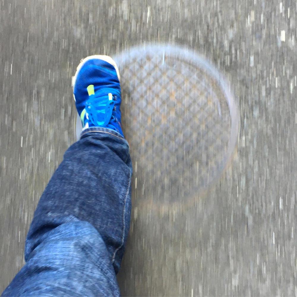 朝の散歩とブログとスイーツ_c0060143_08342481.jpg