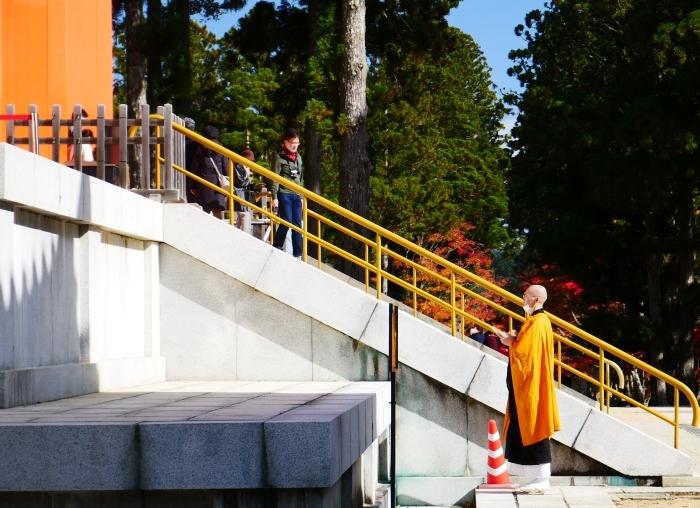 紅葉の高野山へ 5 壇上伽藍へ 2020-11-20 00:000_b0093754_21380876.jpg