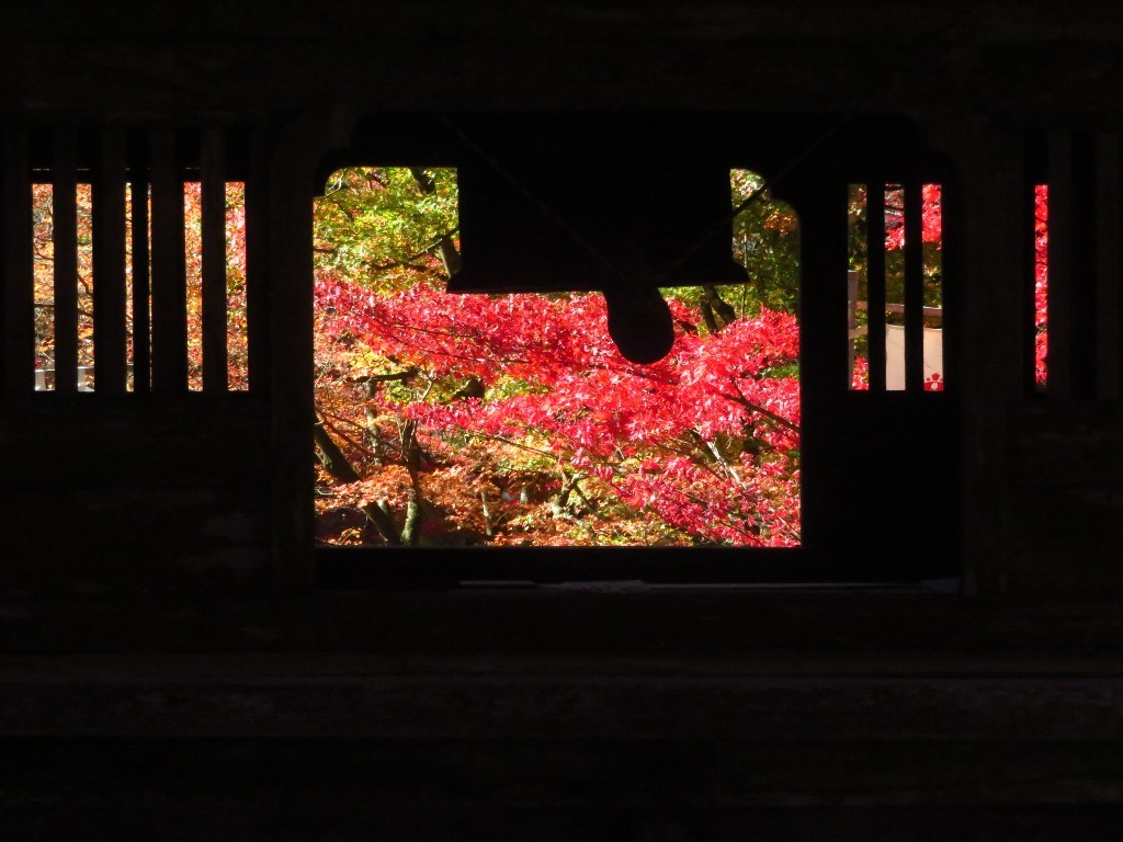 谷汲山の紅葉🍁 _a0018655_17004056.jpg