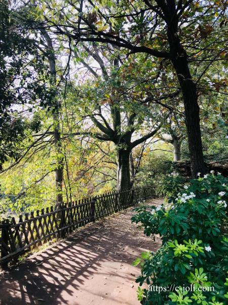 フランスの公園で散歩_d0235162_07124750.jpg