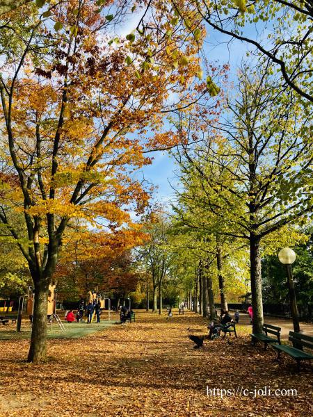 フランスの公園で散歩_d0235162_07150572.jpg