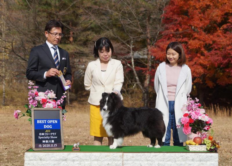 神奈川展_f0126965_18421103.jpg