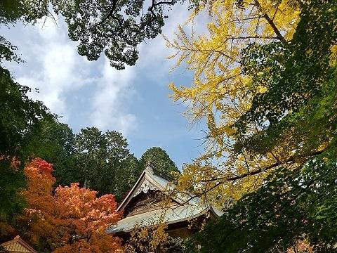 大山寺の紅葉_d0043390_12410040.jpg