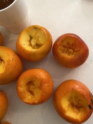 みしらず柿で柿酢づくりWORKSHOP_b0241386_10165061.jpg