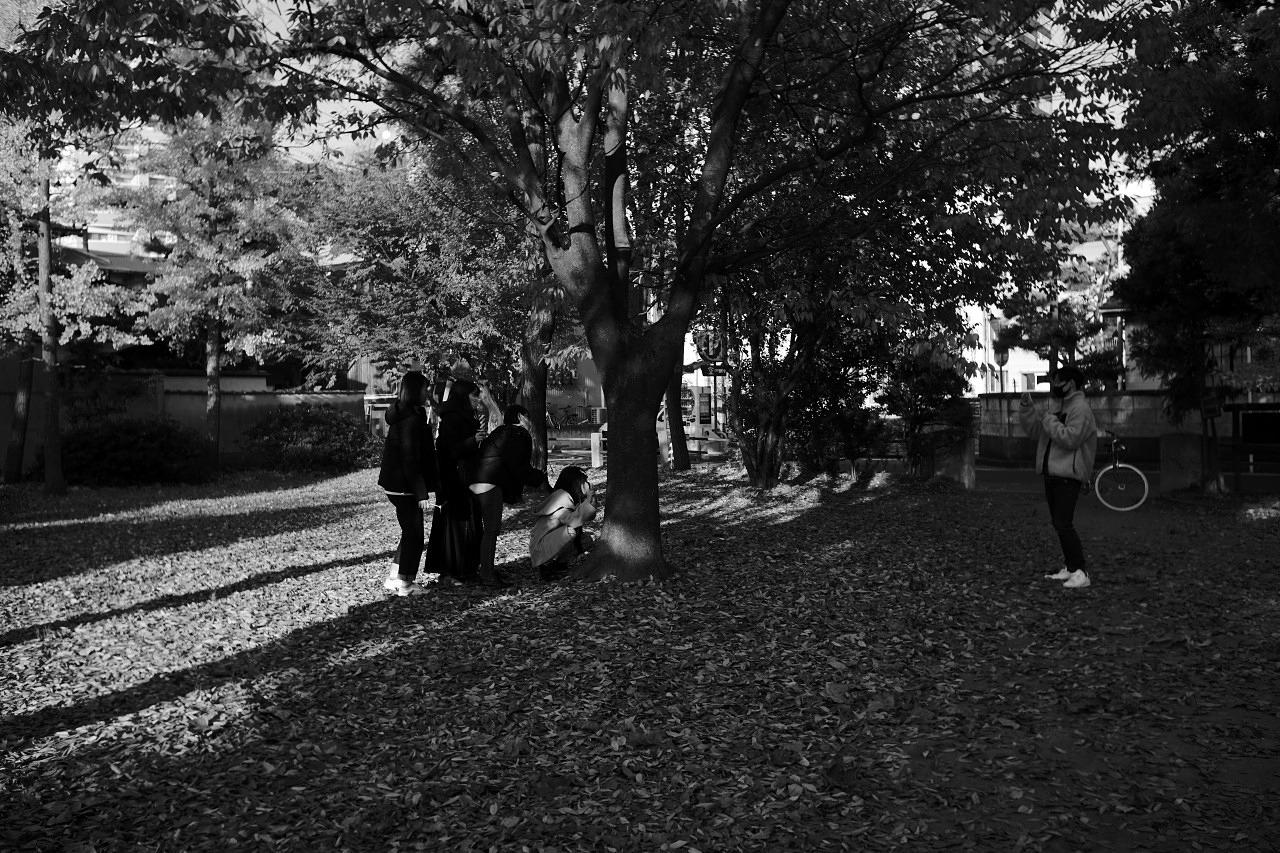 銀杏の公園で「シャッターを押してもらえませんか?」 20201118_c0082800_22140553.jpg