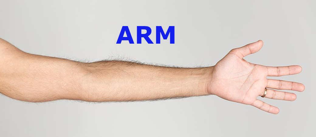 ARMに失敗した Windows RT、 ARM ベースから無事ラウンチした Apple M1_a0056607_20204411.jpg