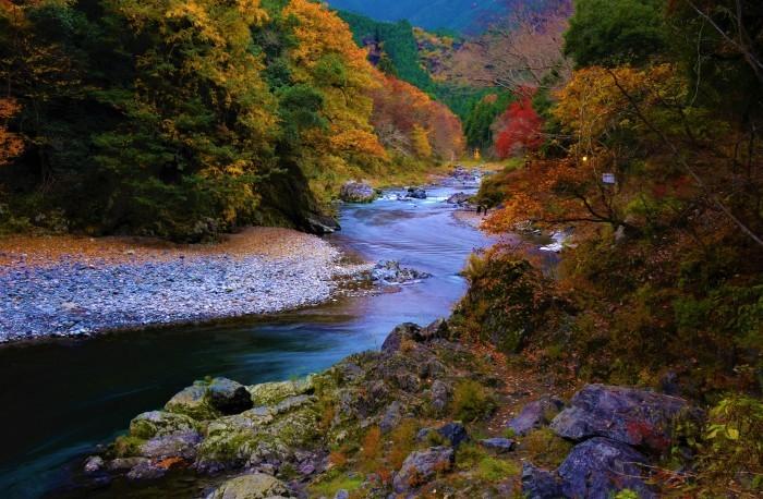 愛おしい秋の流れ_f0045844_02511008.jpg
