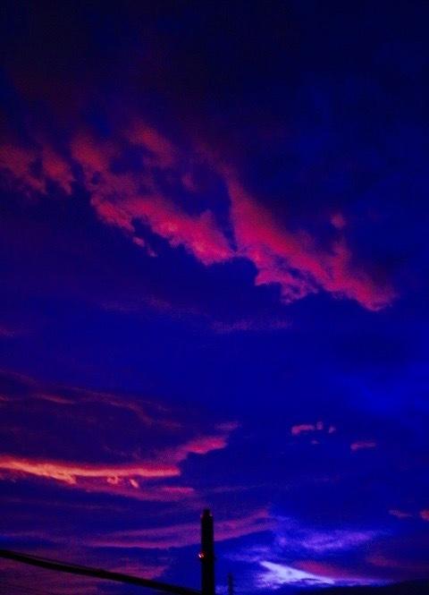 南風 。。。 ! !_a0248459_13385576.jpg