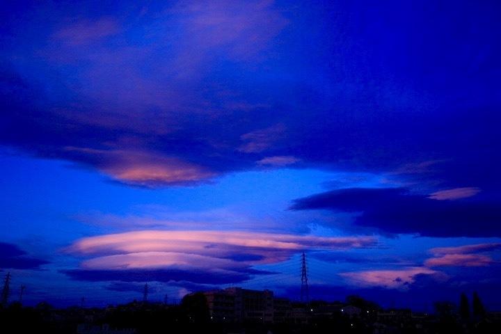 南風 。。。 ! !_a0248459_13393042.jpg
