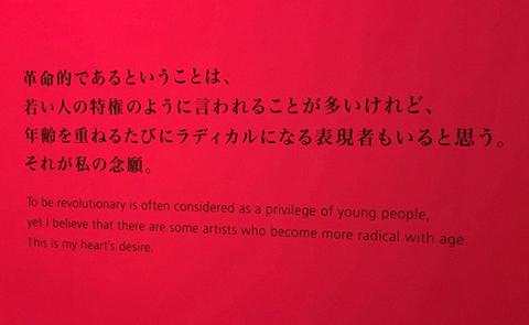 石岡瑛子 回顧展を観た。_e0047694_11231053.jpg