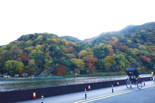 紅葉の嵐山_a0197730_14092276.jpeg