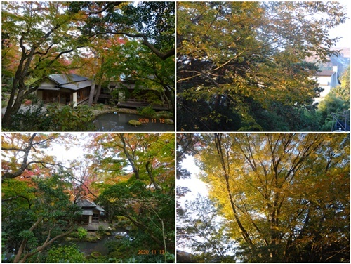 2泊3日のバス旅行で箱根・伊豆へ(その2)_d0037233_10190445.jpg