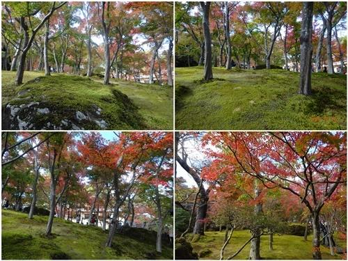 2泊3日のバス旅行で箱根・伊豆へ(その2)_d0037233_10200822.jpg