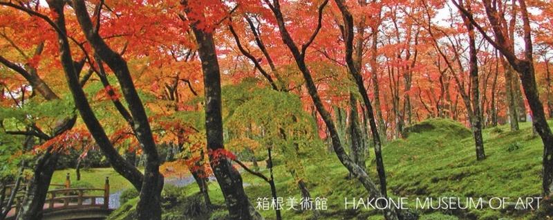 2泊3日のバス旅行で箱根・伊豆へ(その2)_d0037233_10204031.jpg