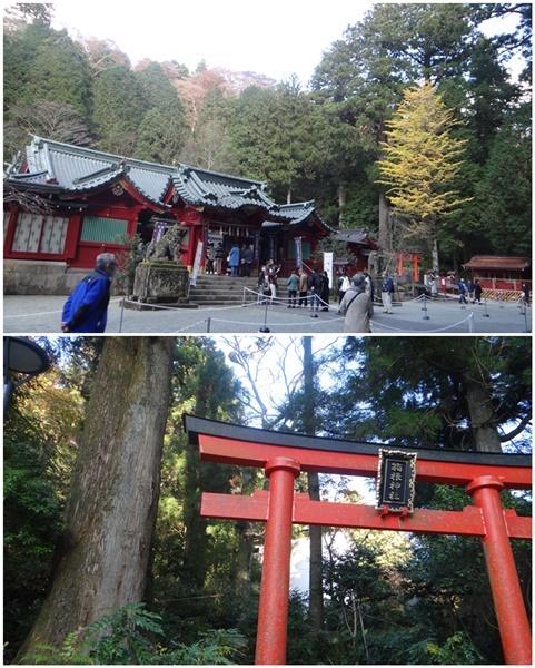 2泊3日のバス旅行で箱根・伊豆へ(その2)_d0037233_10322078.jpg