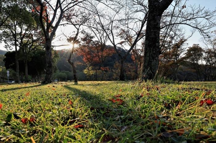 秋、しあわせの村_a0143839_17020163.jpg