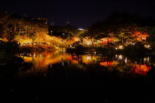 紅葉は落ち葉までが美しく 人は倒れ様までが美しい_e0149941_22035179.jpg