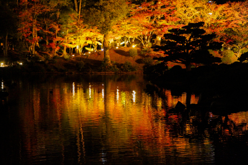 紅葉は落ち葉までが美しく 人は倒れ様までが美しい_e0149941_22041229.jpg