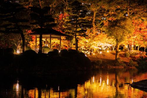 紅葉は落ち葉までが美しく 人は倒れ様までが美しい_e0149941_22044396.jpg