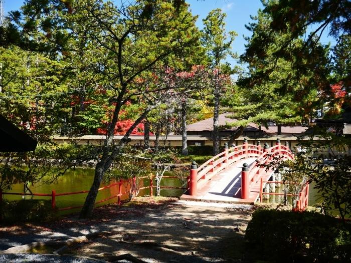 紅葉の高野山へ 7 壇上伽藍の蓮池 2020-11-24 00:000_b0093754_23264015.jpg