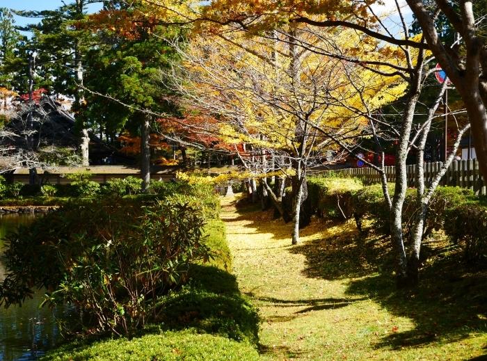 紅葉の高野山へ 7 壇上伽藍の蓮池 2020-11-24 00:000_b0093754_23295008.jpg