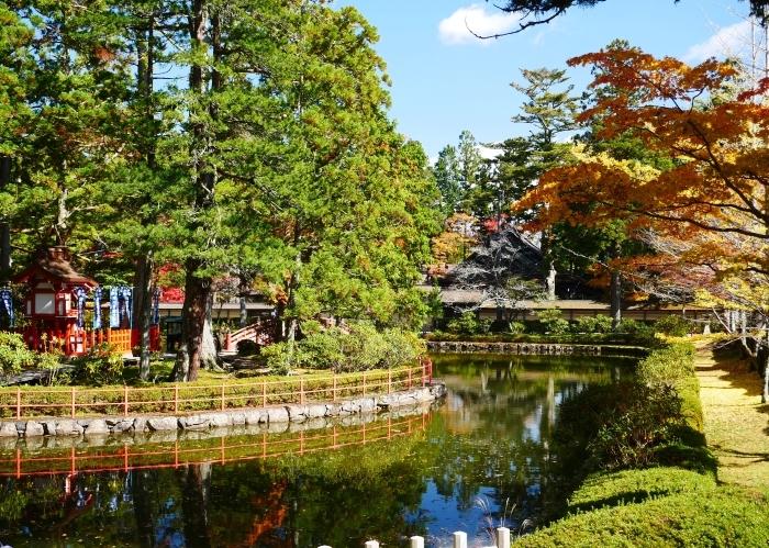 紅葉の高野山へ 7 壇上伽藍の蓮池 2020-11-24 00:000_b0093754_23300338.jpg