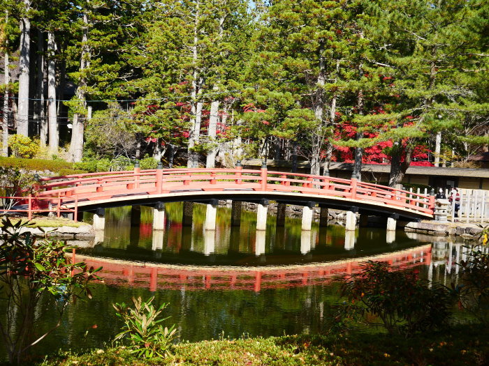 紅葉の高野山へ 7 壇上伽藍の蓮池 2020-11-24 00:000_b0093754_23304490.jpg