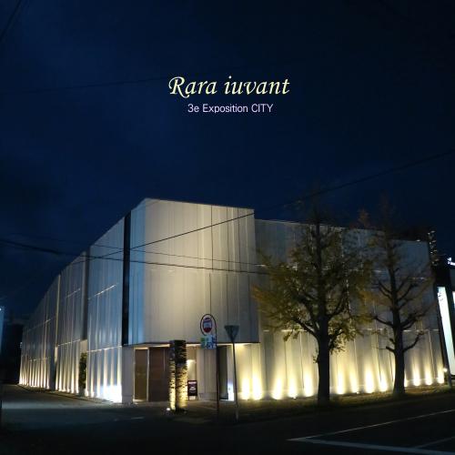 Rara iuvant 第3回作品展「CITY」_b0345658_22434789.jpg