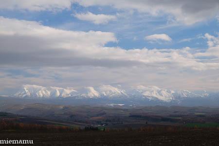 冬の装いの就実の丘~11月の就実_d0340565_19582894.jpg