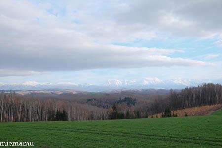 冬の装いの就実の丘~11月の就実_d0340565_19584454.jpg