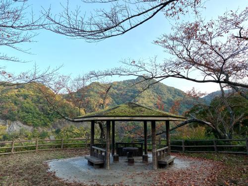 熊取の奥山雨山自然公園へハイキング&紅葉_e0136066_21312589.jpg