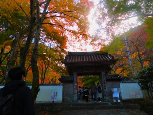 岸和田の大威徳寺、再び_e0136066_22260927.jpg