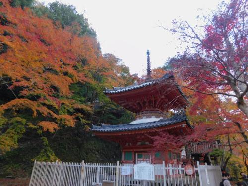 岸和田の大威徳寺、再び_e0136066_22262029.jpg