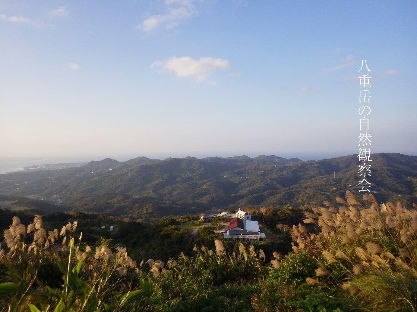 2020 秋の自然観察会_a0247891_10554448.jpg