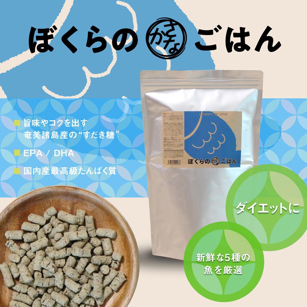 ☆ New Dog Food ・ PURSUIT OF LOVE ☆_d0060413_16590375.jpg