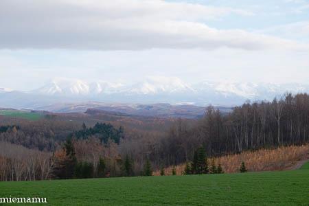 優しい光の就実の丘~11月の就実_d0340565_20093134.jpg