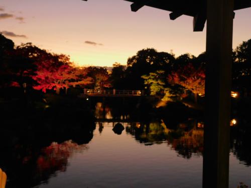 大仙公園の日本庭園のライトアップ_e0136066_17354159.jpg
