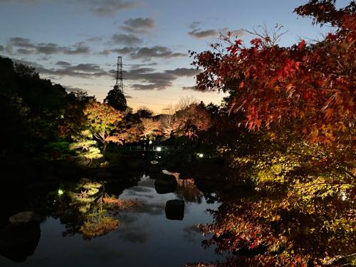 大仙公園の日本庭園のライトアップ_e0136066_17354687.jpg