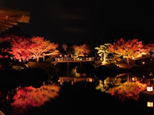 大仙公園の日本庭園のライトアップ_e0136066_17355922.jpg