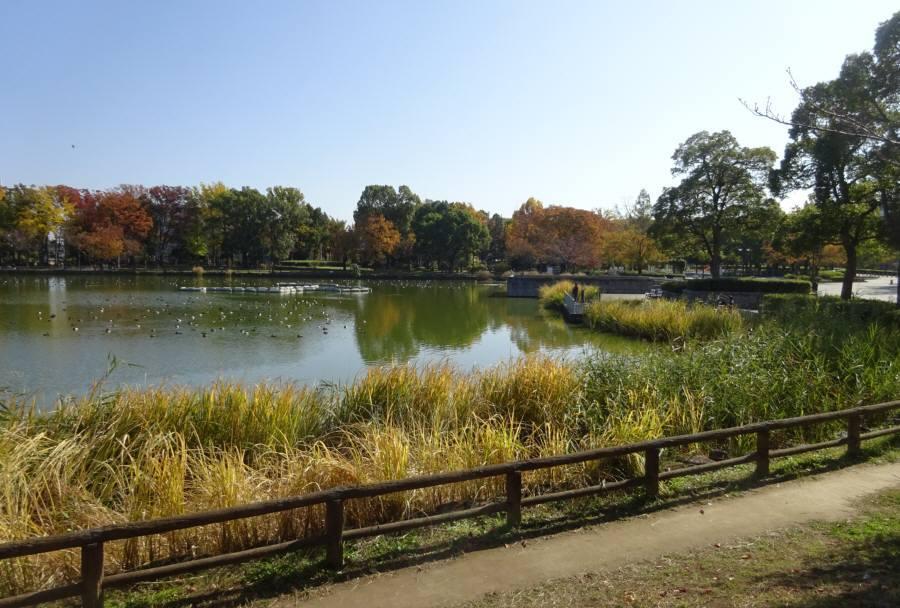 都立浮間公園多面的活用プロジェクト_f0059673_21443694.jpg