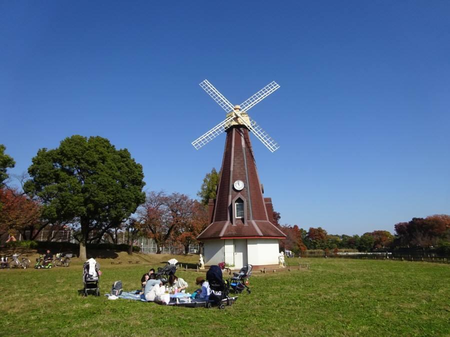 都立浮間公園多面的活用プロジェクト_f0059673_21444670.jpg